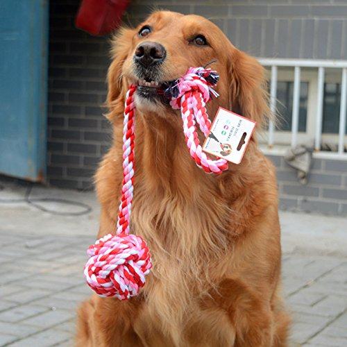 generale-feis-morso-di-cane-palla-giocattolo-giocattoli-pet-cat-giocattoli-cane-giocattolo-per-la-de