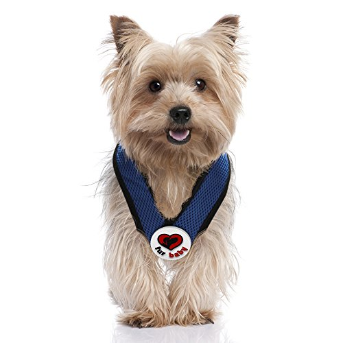 Best Choke Free Dog Harness