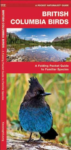british-columbia-birds-pocket-naturalist-guide-series