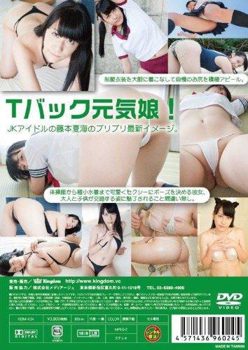 藤本夏海 / スクールゾーン [DVD]