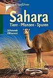 Sahara: Tiere. Pflanzen. Spuren
