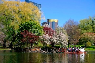 Wallmonkeys Peel and Stick Wall Decals - Boston Public Garden in Spring - 24