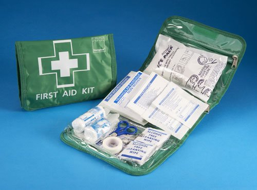 Steroplast 40 Piece First Aid Kit Bag for Car Travel or Home