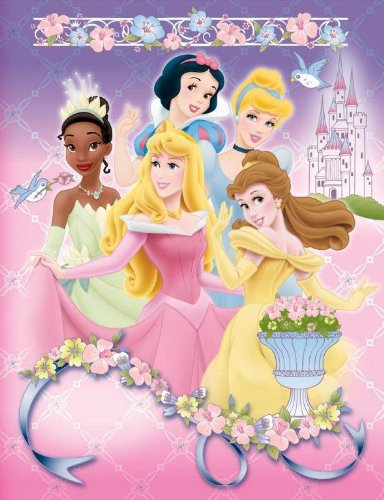 Disney Princess Photo Album, Small