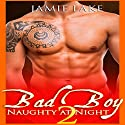 Bad Boy: Naughty at Night 2 Audiobook by Jamie Lake Narrated by James Talbot