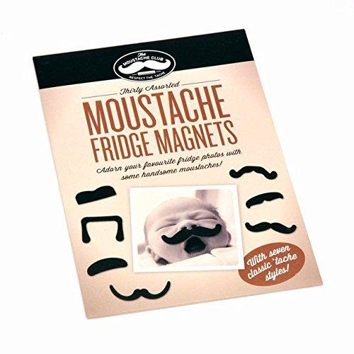 ginger-fox-moustache-fridge-magnets-pack-of-30