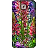 FUSON Designer Back Case Cover For Samsung J7 Max G615F/DS, Samsung Galaxy On Max, Samsung Galaxy J7 Max (Environment Blooming Colorful Perfect Blossom Closeup Beautiful Ecology)