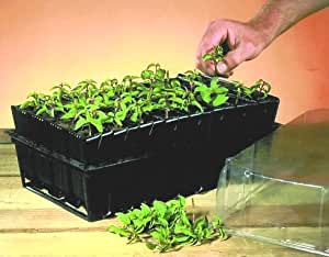 Deep Root Planting Seed Tray