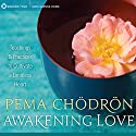 Awakening Love: Teachings and Practices to Cultivate a Limitless Heart Rede von Pema Chodron Gesprochen von:  uncredited