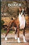 The Boxer (0866220283) by Nicholas, Anna Katherine