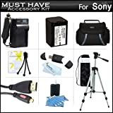 Must Have Accessory Kit For Sony HDR-CX220, HDR-CX220/B, HDR-CX330, HDR-CX900, HDR-PJ810, HDR-PJ540, HDR-PJ340, HDR-PJ670, FDR-AX33 HD Camcorder Includes Replacement (2300Mah) NP-FV70 Battery + Ac / DC Charger + Case + 50