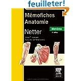 MémoFiches anatomie Netter Membres