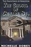 img - for The Ghosts of Centre Street: A Haunting of Kingston (The Hauntings of Kingston) book / textbook / text book