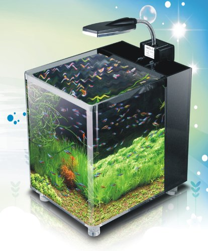 Nano Cube Aquarium Tropical Fish Tank 10 Litres Led 39 S At
