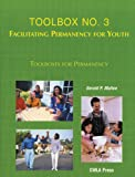 img - for Toolbox 3: Facilitating Permanency for Youth book / textbook / text book
