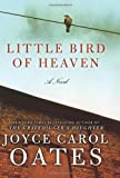 Little Bird of Heaven: A Novel