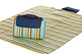Picnic Plus Large Mega Mat Blue Berry Stripe 68