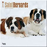 BrownTrout Saint Bernards 2014 Wall