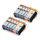 Blake Printing Supply Ink Cartridge for Inkjet Printer, 12-Pack (2 Small Black, 2 Cyan, 2 Gray, 2 Magenta, 2 Yellow, 2 Big Black)