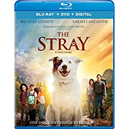 The Stray [Blu-ray]