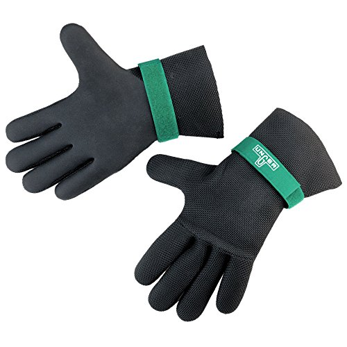 Glove, Neoprene, Large front-195