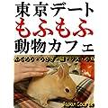 東京デート もふもふ 動物カフェ: ふくろう・うさぎ・猫・リス・小鳥とのふれあい観光