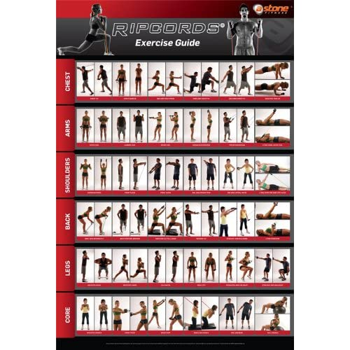 Amazon.com : Ripcords Exercise Guide Poster | Resistance Band Workout