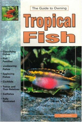 Tropical Fish, Neal Pronek
