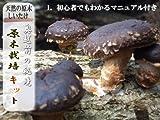 椎茸の原木栽培キット(高さ:約30cm、直径:約15cm)