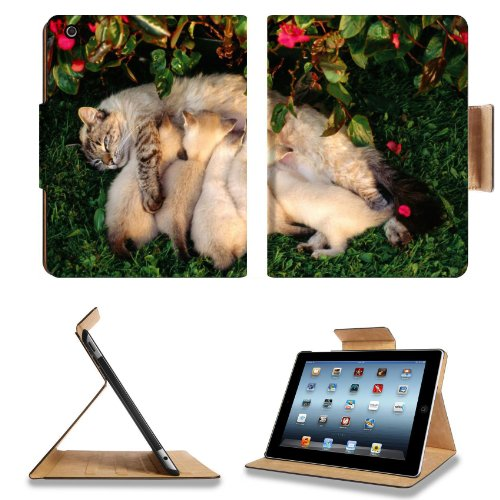 Mother Cat Kitten Feeding Grass Milk Animal Pet Apple Ipad 2Nd 3Rd 4Th Flip Case Stand Smart Magnetic Cover Open Ports Customized Made To Order Support Ready Premium Deluxe Pu Leather 9 7/8 Inch (250Mm) X 7 7/8 Inch (200Mm) X 5/8 Inch (17Mm) Luxlady Ipad front-1006104
