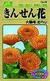 カネコ種苗 草花タネ021 きんせん花 むらじ 10袋セット