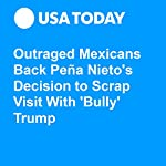 Outraged Mexicans Back Peña Nieto's Decision to Scrap Visit With 'Bully' Trump | David Agren