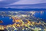 2542ピース ジグソーパズル パズルの超達人EX 検定 2級 函館市街の夜景-北海道 スーパースモールピース(50x75cm)