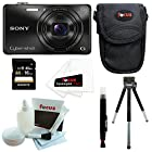 Sony DSC-WX220 DSCWX220/B 18.2 MP Digital Camera with 2.7-Inch LCD (Black) with Sony 16GB SDHC Card and Accessory Bundle
