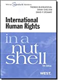 img - for International Human Rights in a Nutshell book / textbook / text book