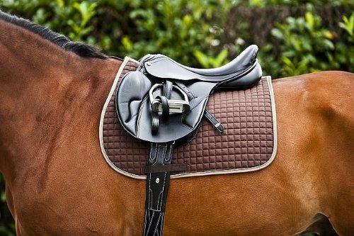 Qualitäts Schabracke Satteldecke Dressur Pony