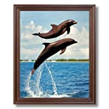 Bottle Nosed Dolphin Jumping In Air Animal Fish Sea Life Wall Picture Cherry Framed Art Print