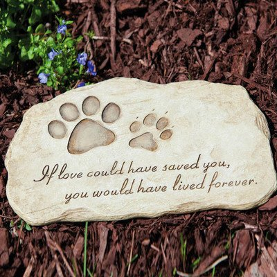 Evergreen Enterprises Dog Paw Print Devotion