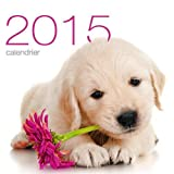 Calendrier mural Chiens 2015...