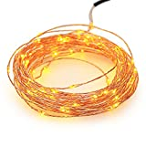 NEWSTYLE 33Ft 10M Warm White 100 LED Lights Strings 100 LEDs on Copper Wire 33ft LED Starry Light with 12v Power Adapter For Christmas Wedding and Party