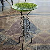 Evergreen Enterprises, Inc. Bird Bath Stand Tall