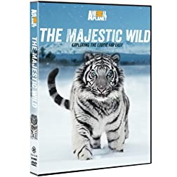 The Majestic Wild