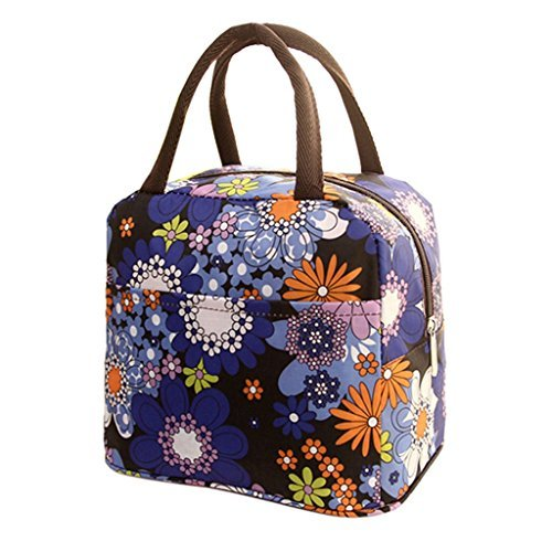 Hatop Thermal Insulated Tote Picnic Lunch Cool Bag Cooler Box Handbag Pouch (Purple) (Embark Cooler 12 Can compare prices)