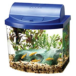 Share facebook twitter pinterest buy used 34 59 used very for Amazon fish tanks