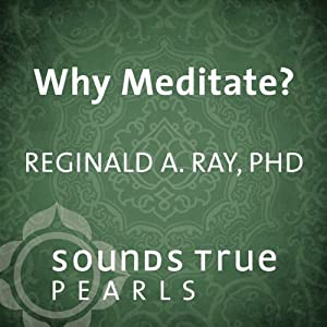Why Meditate? Speech