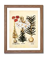 French Victorian Flower Lilies Contemporary Home Decor Wall Picture Oak Framed Art Print