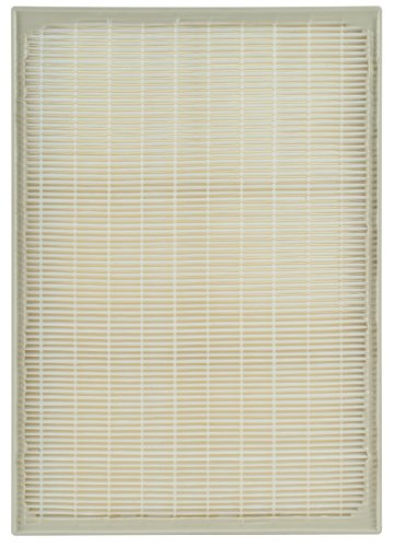 Cheap Whirlpool Whispure AP250 Replacement HEPA Filter (AP250 HEPA Filter)