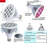 Plant LED Grow Light Bulb Lamp Fixture E27 12 Watts Hydroponic Grow Light.Full Red Blue Spectrum.Best for Indoor Outdoor Plants,Flowers,Vegetables,Fruits,Garden Grow Room Lights,GreenHouse,Grow Tents