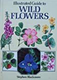 ILLUSTRATED GUIDE TO WILD FLOWERS.