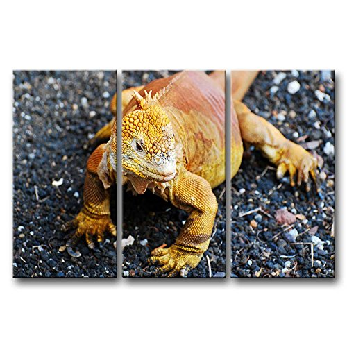 3 Panel Wall Art Painting Golden Galapagos Land Iguana Pictures Prints On Canvas Animal The Picture Decor Oil For Home Modern Decoration Print For Boys Bedroom